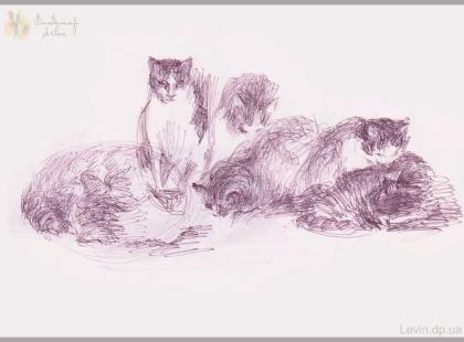 Кошки, рисунок