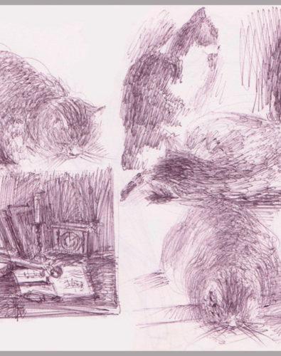 Кошки, зарисовка