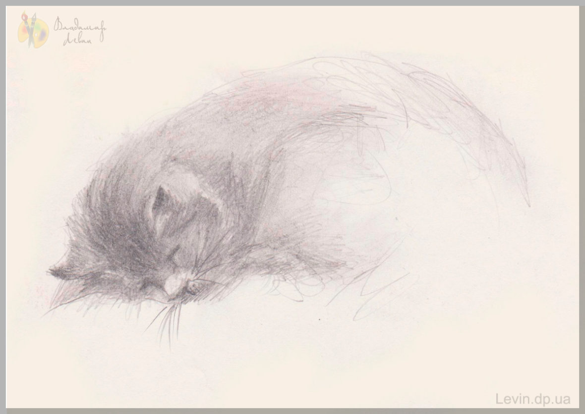 Рисунок, спящий кот
